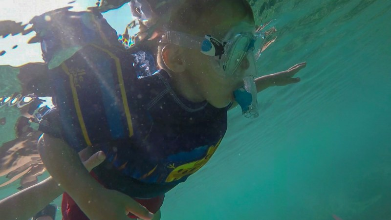 How to Snorkel-Face in the water