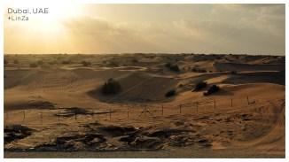 D_desert1
