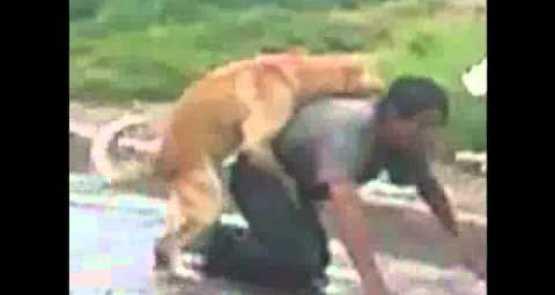 mujer asiendolo con un perro