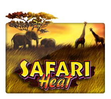 Joker Slot - Safari Heat