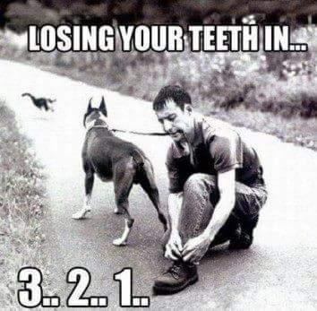 Lose teeth