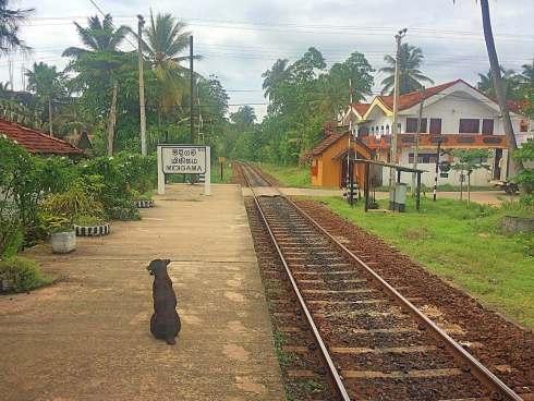 Estação de comboios de Midigama