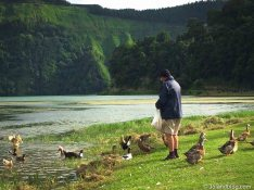 Ilha São Miguel - Açores