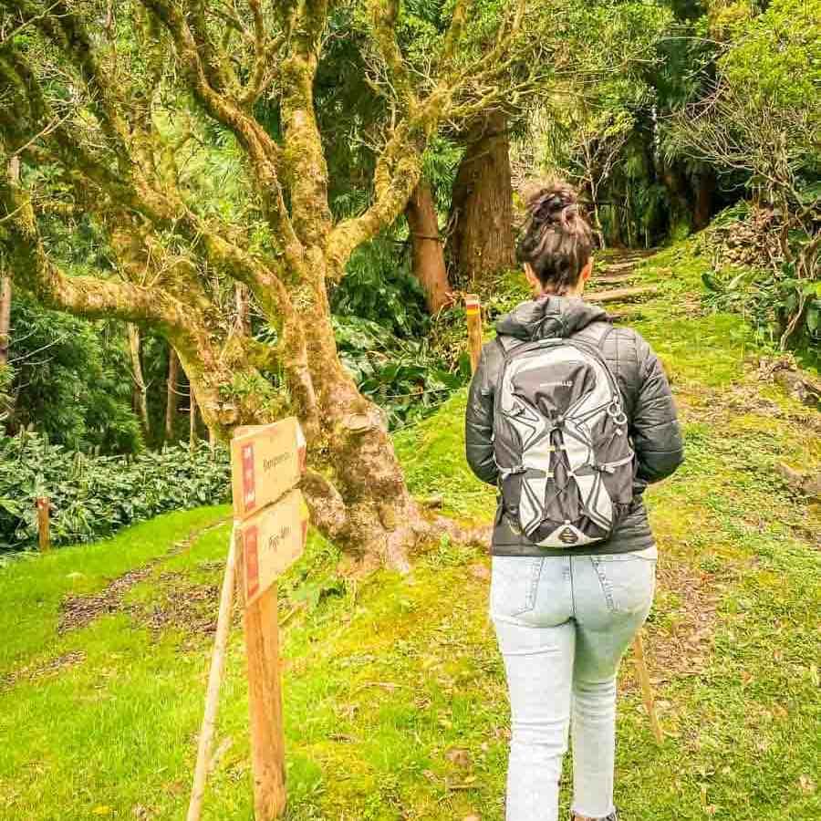 Trilho do Pico Alto