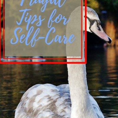 Tips for Frugal Self-care