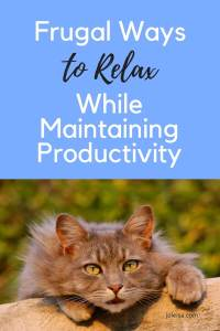 These are cheap ways to make sure you are productive even when you relax. See how having a pet can help you to relax. Pin for later.