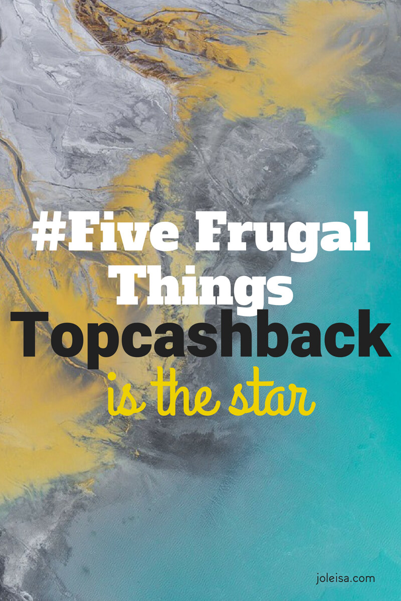 Sharing our frugal ways each week helps us to stay on track. Our best save this week came from Topcasback and we want you to know how you can save too. You will need to download the app to start using it to save hundreds on your everyday purchases including appliances, technology products, flights, and even hotels
