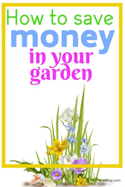 How to Save Money in your Garden