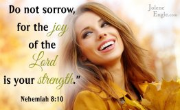 joy of the lord copy