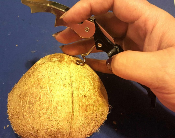 """You can use a cork-screw or a Philips screw-driver with a hammer to punch holes in the three """"eyes"""" of the coconut."""