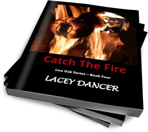 Review for Catch the Fire