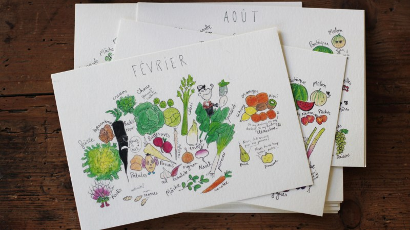 Permalien vers : Calendrier des fruits et légumes
