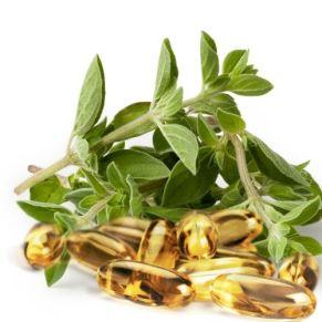 capsules d'huile essentielle d'origan puissant anti bactétien