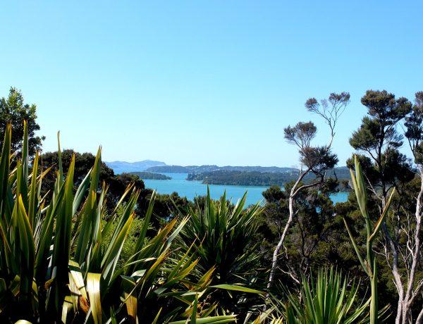 Bay of Island