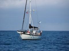 Akimbo anchored off the break