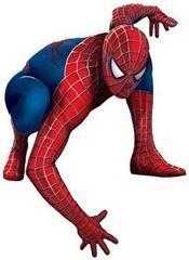 roald-smeets-spider-man