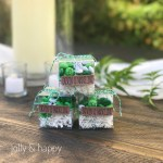 Create Unique Favors with Cricut