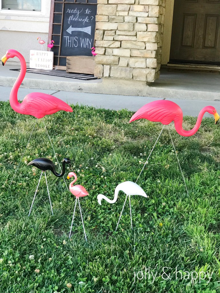 lawn ornament flamingos graduation party