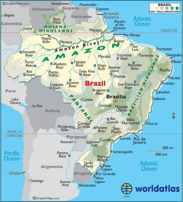 brasile copia
