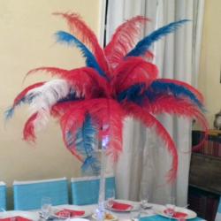 pic-6-vegas-feathers.png-nggid03159-ngg0dyn-250x250x100-00f0w010c011r110f110r010t010