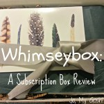 Review: Whimseybox (A Subscription Box)