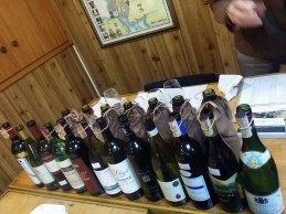 Eleven 1996 Australian shiraz wines, plus a 1996 Hermitage for a yardstick