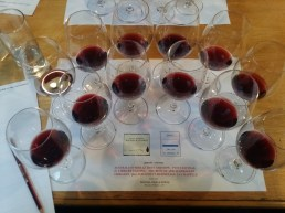 Twelve blind shiraz wines, 20 years old