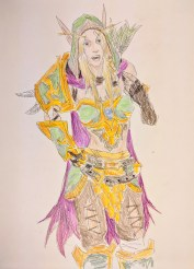 One of the Windrunners (not the undead one), Warcraft