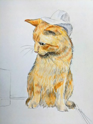 Biscuit the Cat with his cool cowboy hat