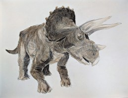 Amdall Triceratops