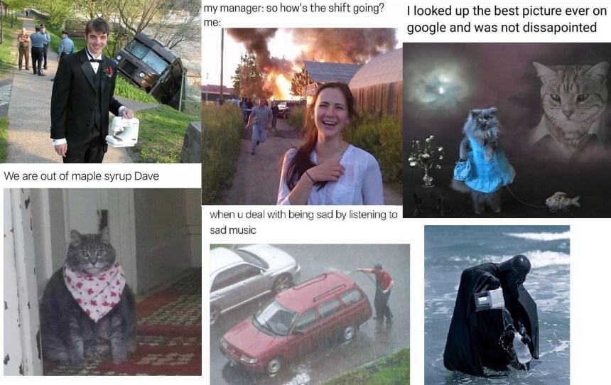 Strange Meme Examples (Amdall)