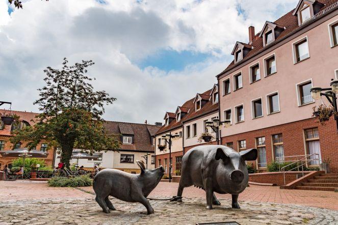 20200819_Ueckermünde-9