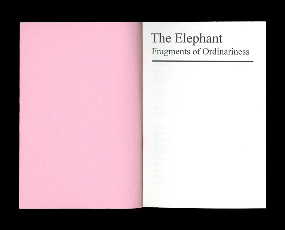 jonas_berthod_elephant_2-3