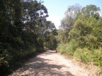 Vista parcial da estrada do Morro da Cruz