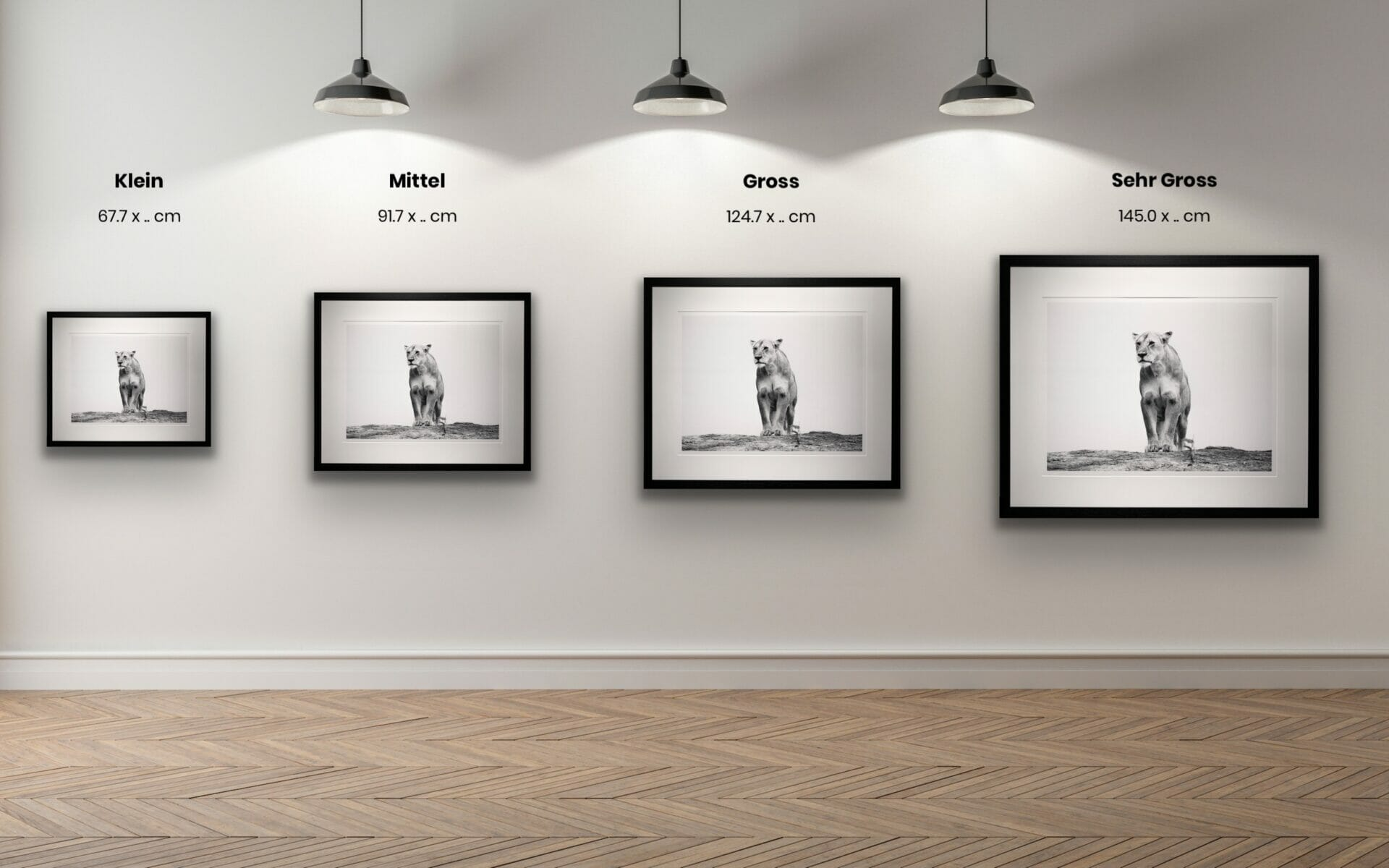 Schwarz/Weiss Fine Art Passepartout Wandbilder Bilder Fine Art Online Kaufen Steinbock Steinböcke Gämse Schweiz Berner Oberland