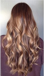 tortoise shell brunette highlights