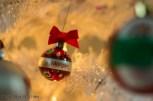 Ornament_IMG_1487