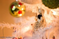 Ornament_IMG_1491