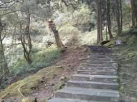 Alishan - mountain trail 2