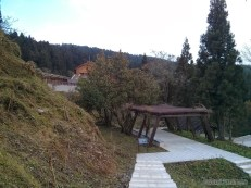 Alishan - mountain trail 6