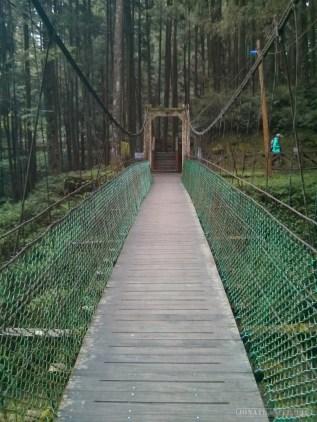 Alishan - mountain trail bridge