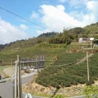 Alishan - road to Alishan 2