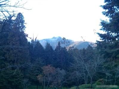 Alishan - scenery 6