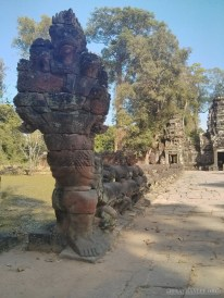 Angkor Archaeological Park - Preah Khan 19