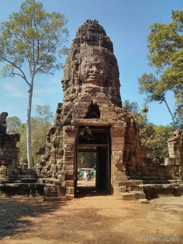 Angkor Archaeological Park - Ta Prohm 1