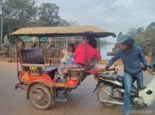 Angkor Archaeological Park - monkey trouble 3