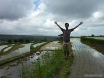 Balinese rice terraces - portrait 1