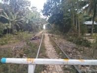 Battambang - bamboo train forward