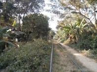 Battambang - bamboo train track 2