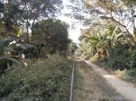 Battambang - bamboo train track 2